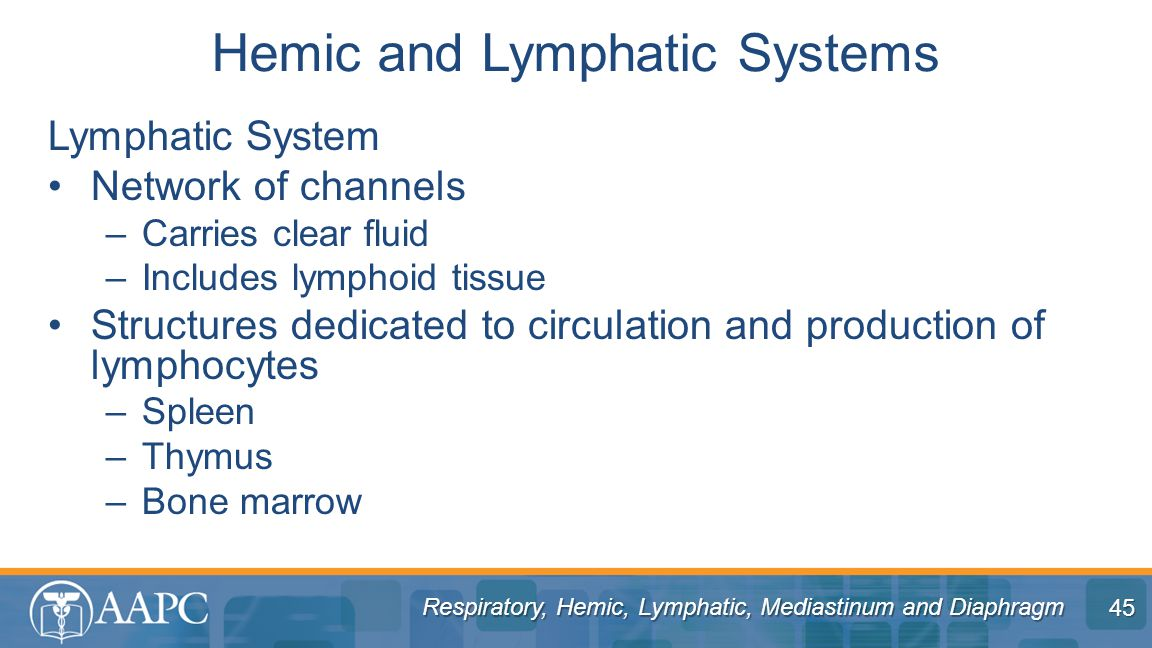 Hemic and Lymphatic Systems