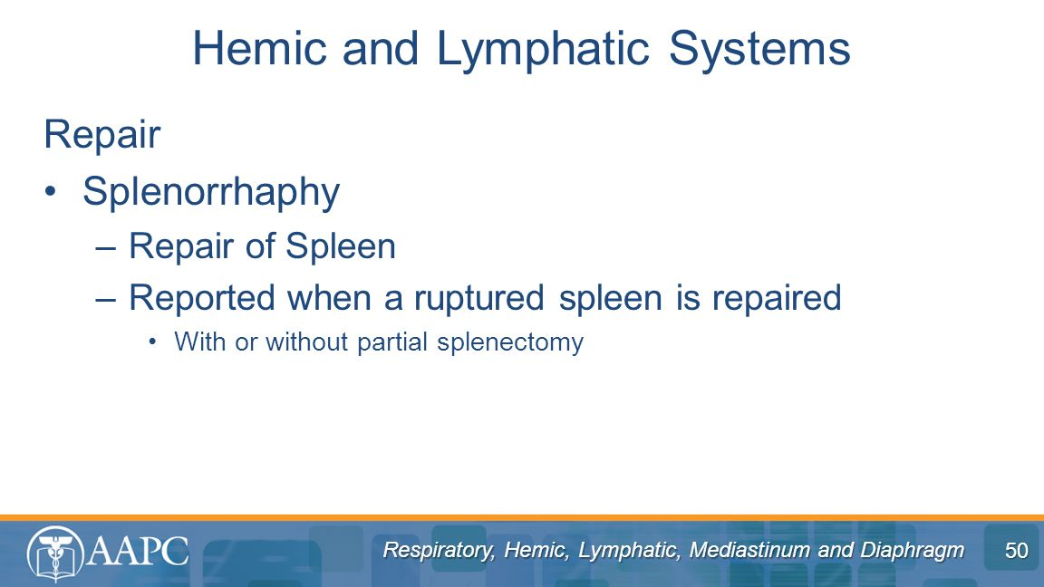 Hemic and Lymphatic