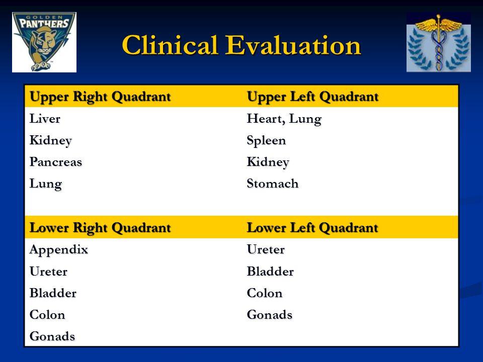 Clinical Evaluation Upper Right Quadrant Upper Left Quadrant