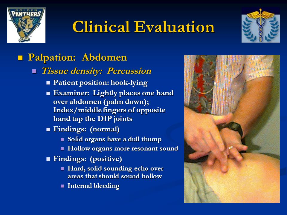 Clinical Evaluation Palpation: Abdomen Tissue density: Percussion