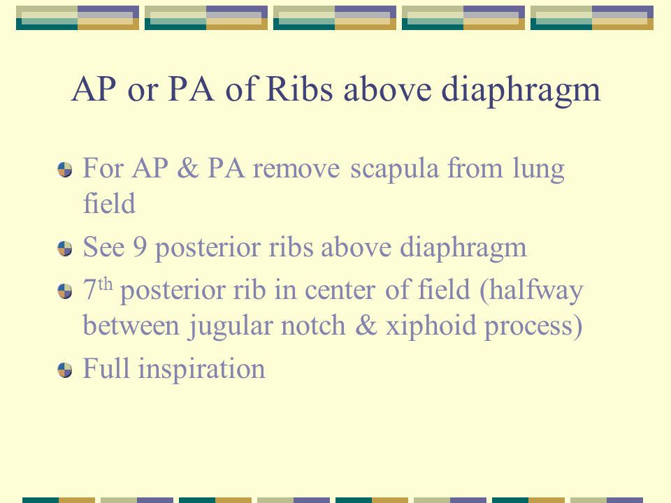 AP or PA of Ribs above diaphragm