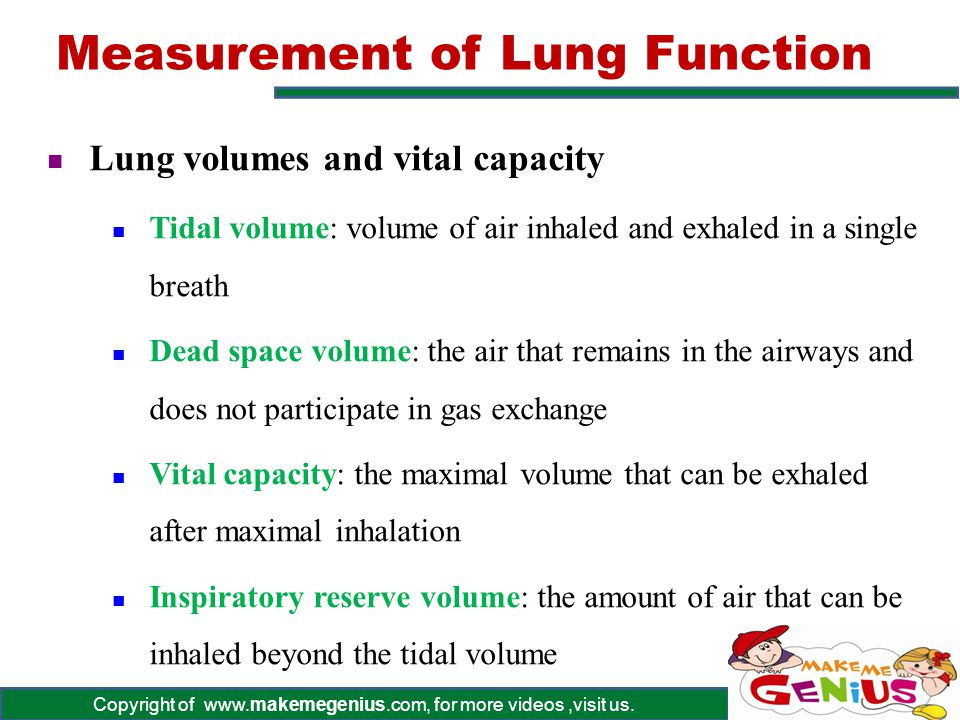 Measurement of Lung Function