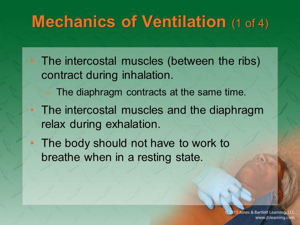 Mechanics of Ventilation (1 of 4)