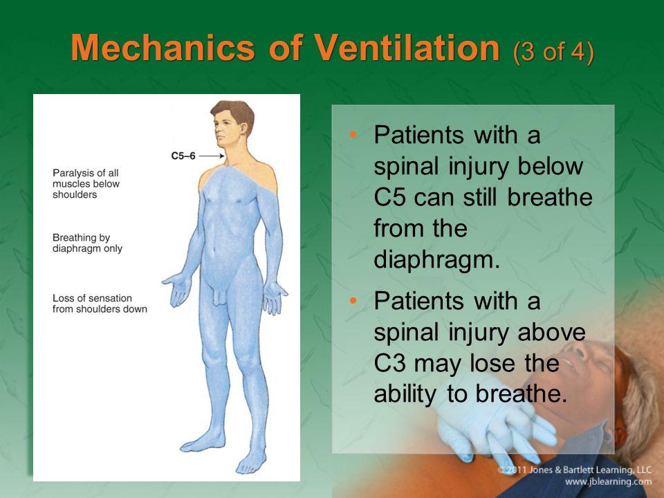 Mechanics of Ventilation (3 of 4)