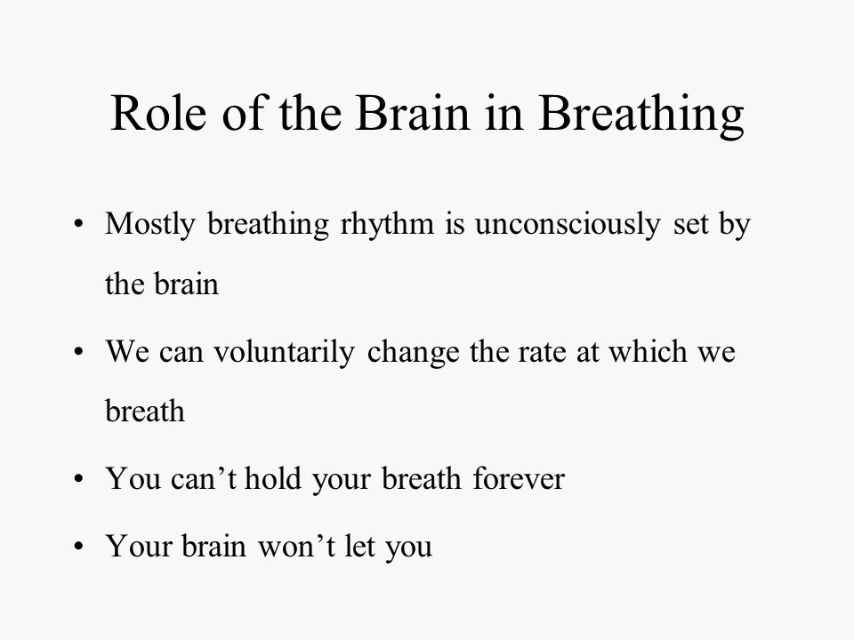 Role of the Brain in Breathing