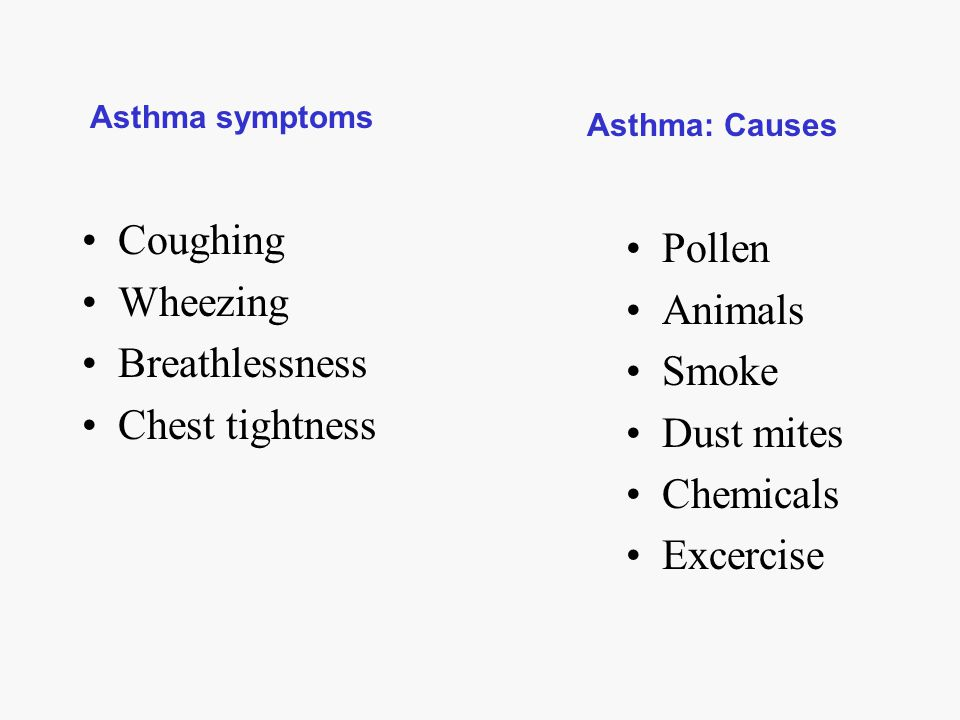 Coughing Pollen Wheezing Animals Breathlessness Smoke Chest tightness