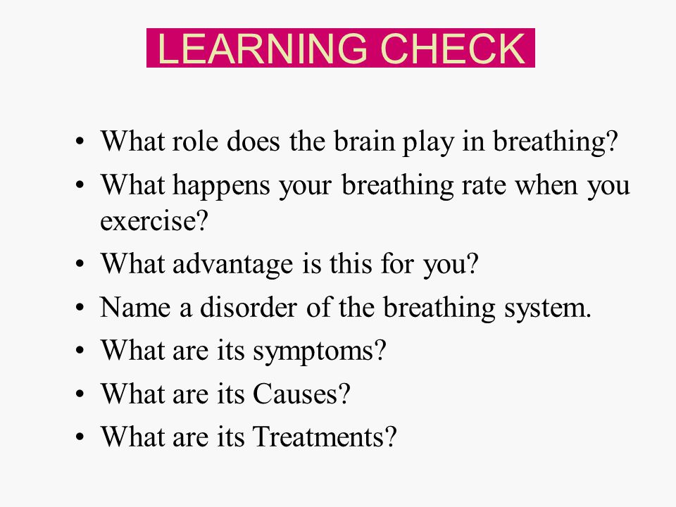 LEARNING CHECK What role does the brain play in breathing