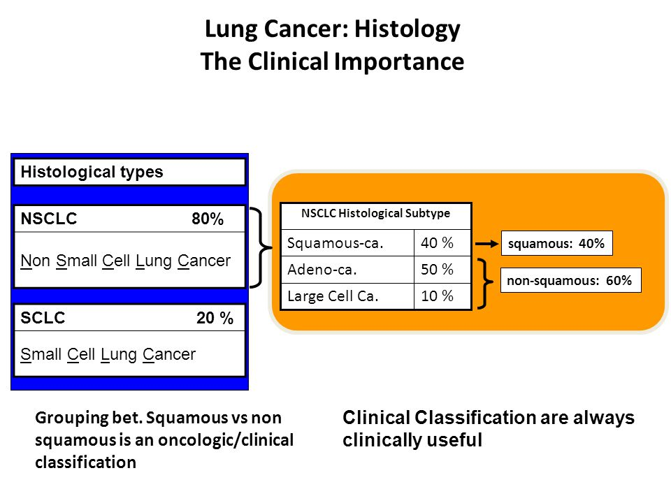 Lung Cancer: Histology The Clinical Importance