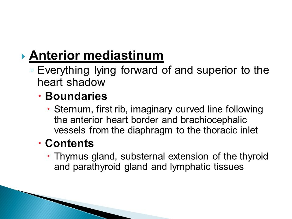 Anterior mediastinum Everything lying forward of and superior to the heart shadow. Boundaries.