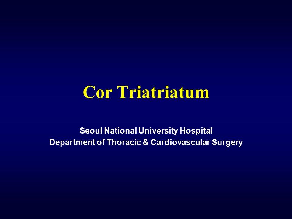 Cor Triatriatum Seoul National University Hospital