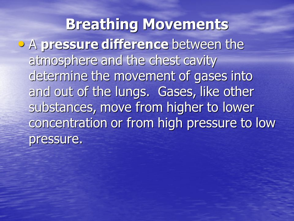 Breathing Movements