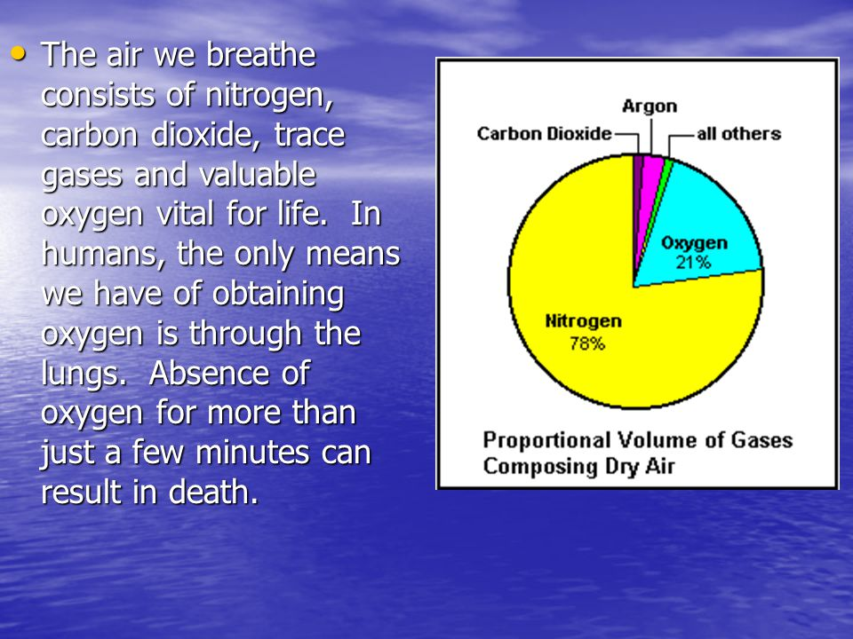 The air we breathe consists of nitrogen, carbon dioxide, trace gases and valuable oxygen vital for life.
