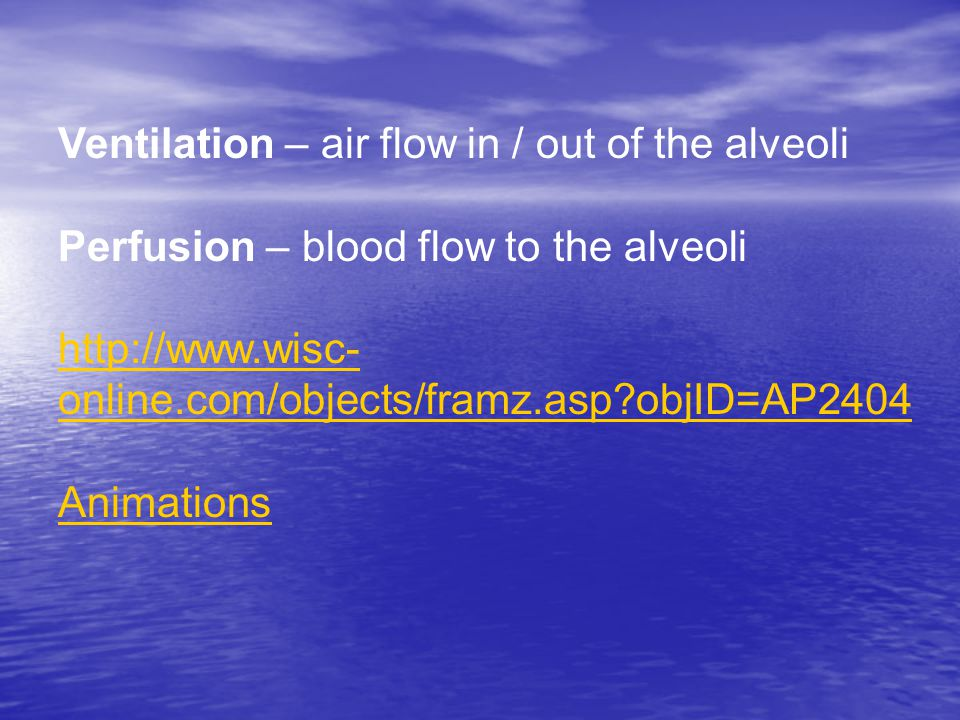 Ventilation – air flow in / out of the alveoli