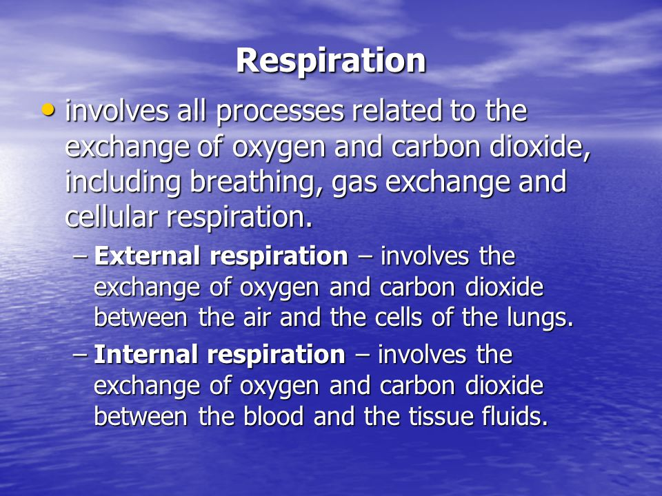 Respiration involves all processes related to the exchange of oxygen and carbon dioxide, including breathing, gas exchange and cellular respiration.