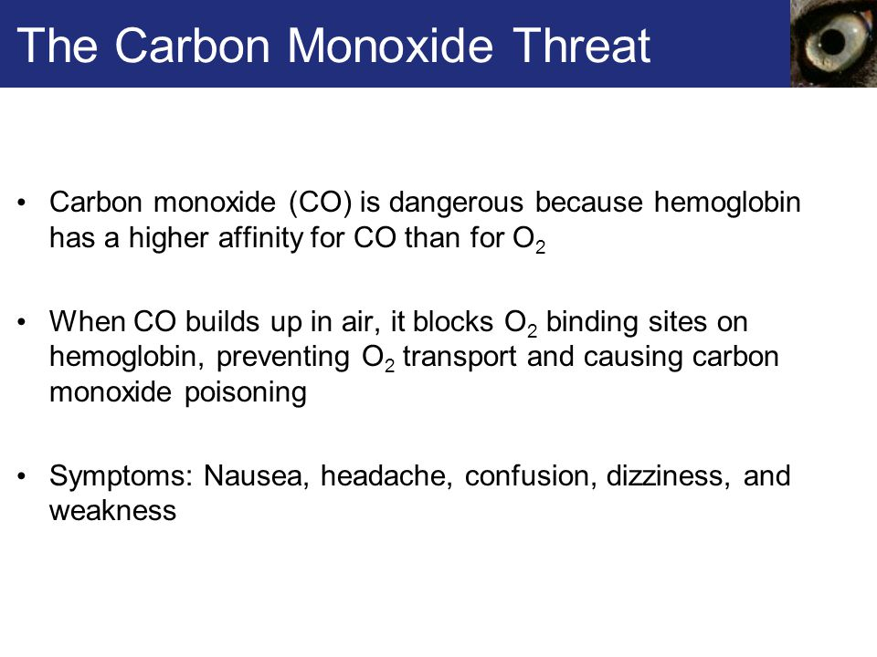 The Carbon Monoxide Threat