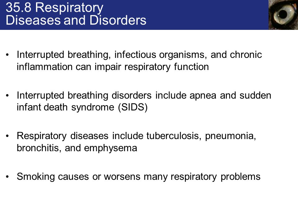 35.8 Respiratory Diseases and Disorders