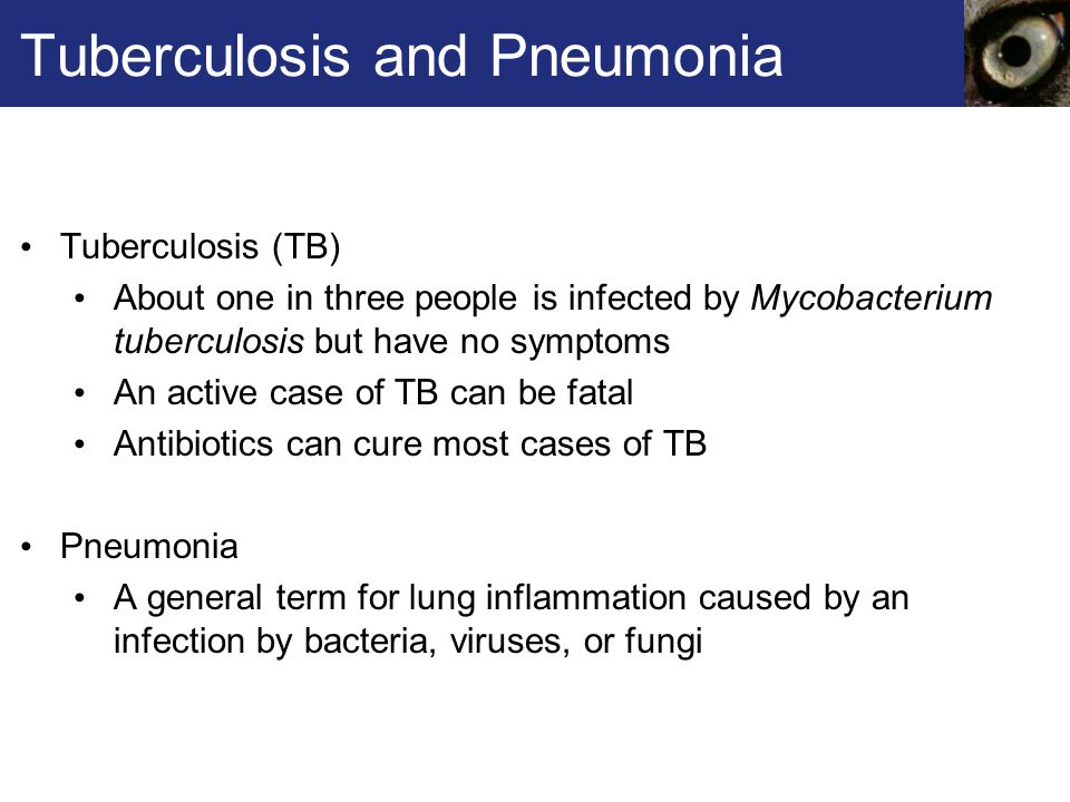 Tuberculosis and Pneumonia