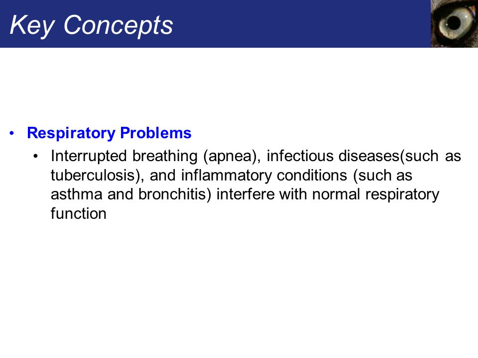 Key Concepts Respiratory Problems