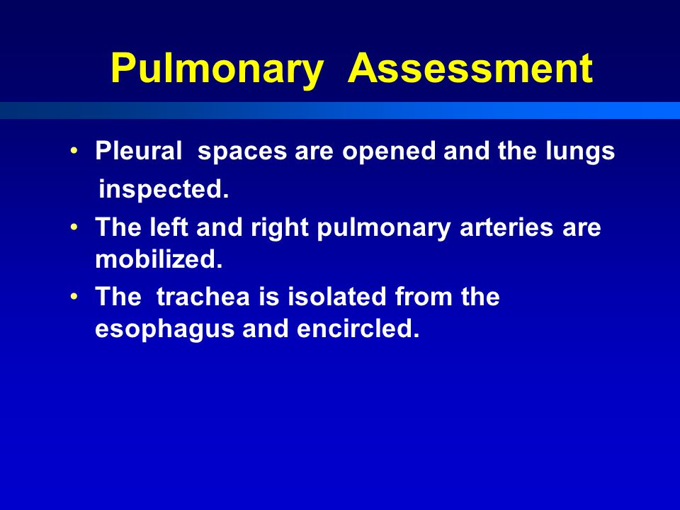 Pulmonary Assessment Pleural spaces are opened and the lungs