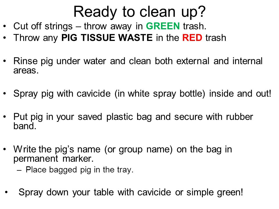 Ready to clean up Cut off strings – throw away in GREEN trash.