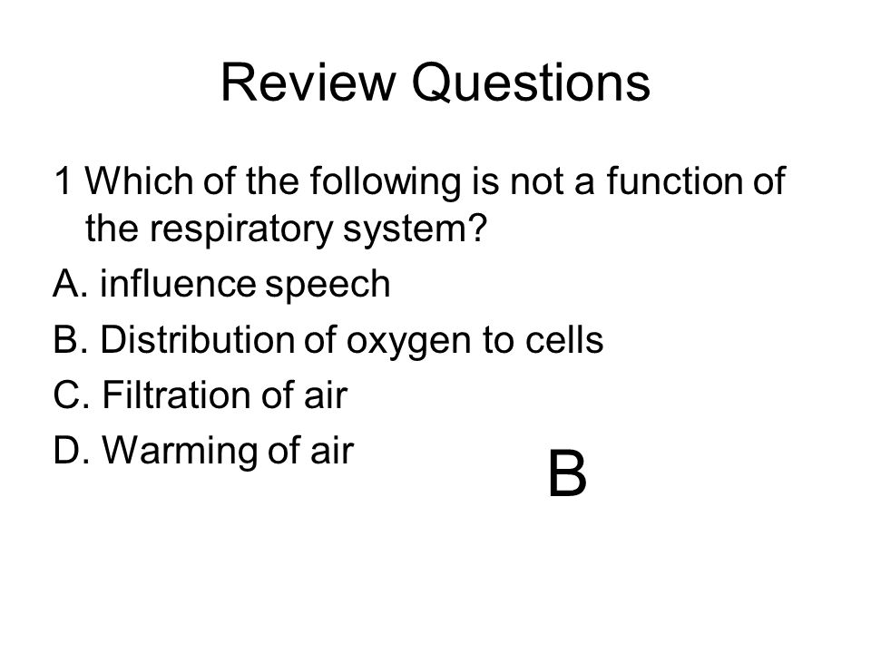 Review Questions 1 Which of the following is not a function of the respiratory system A. influence speech.