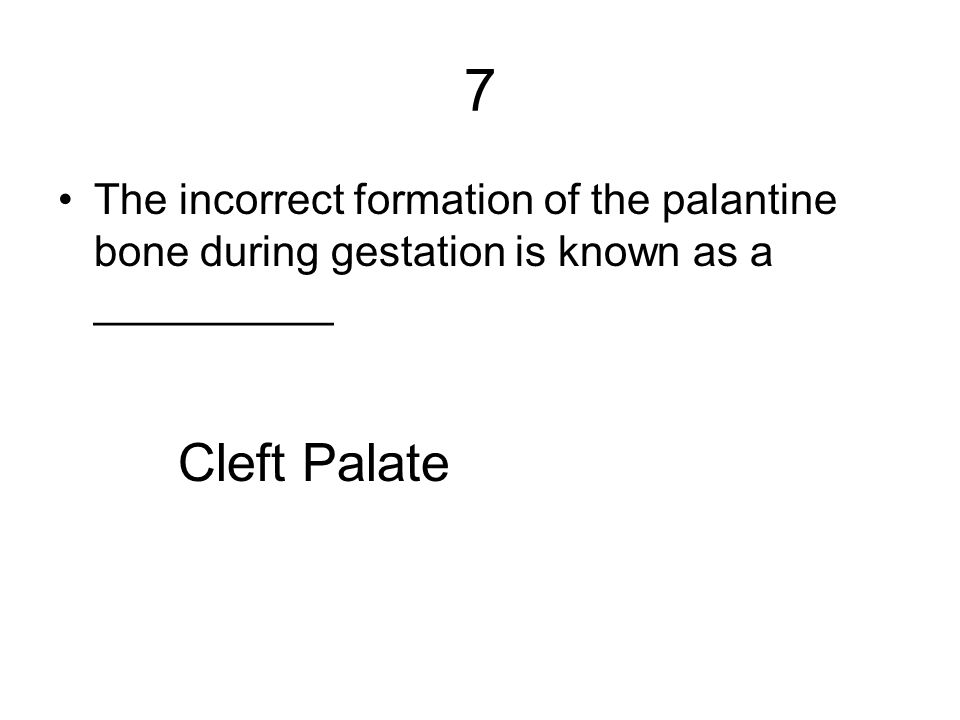 7 The incorrect formation of the palantine bone during gestation is known as a __________.