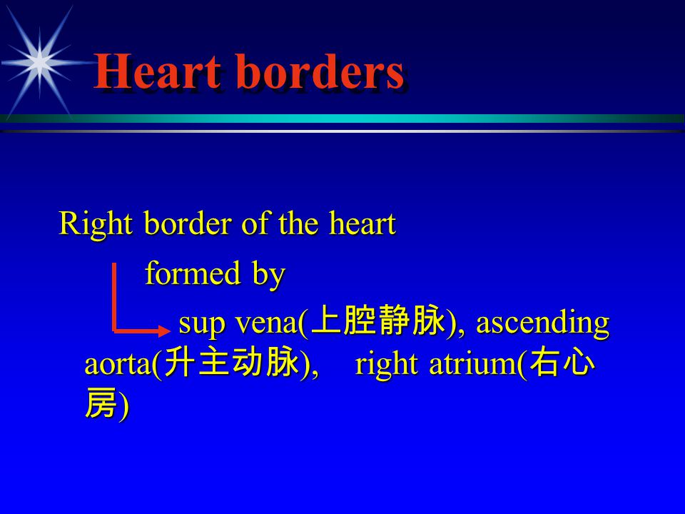 Heart borders Right border of the heart formed by