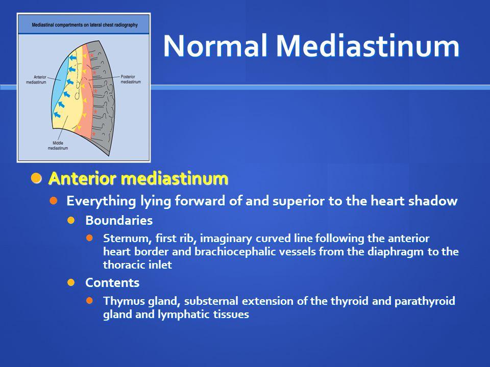 Normal Mediastinum Anterior mediastinum