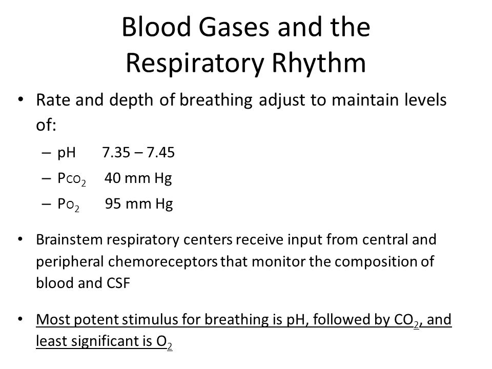 Blood Gases and the Respiratory Rhythm