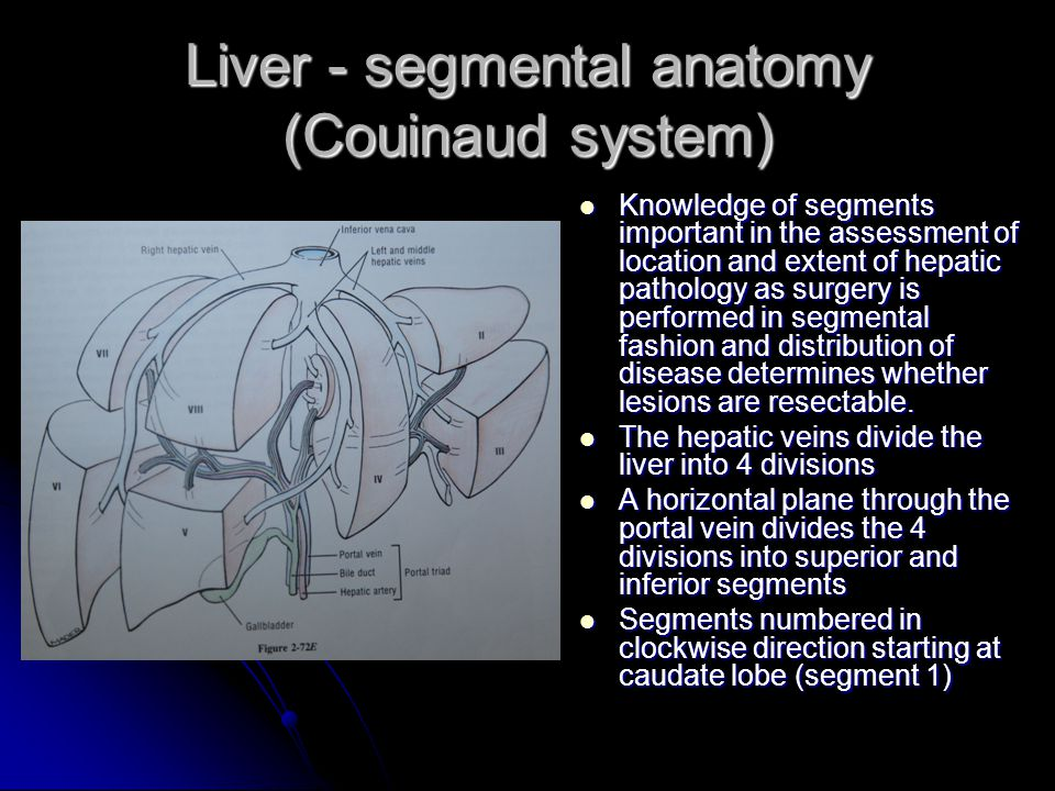 Segmental anatomy of the liver