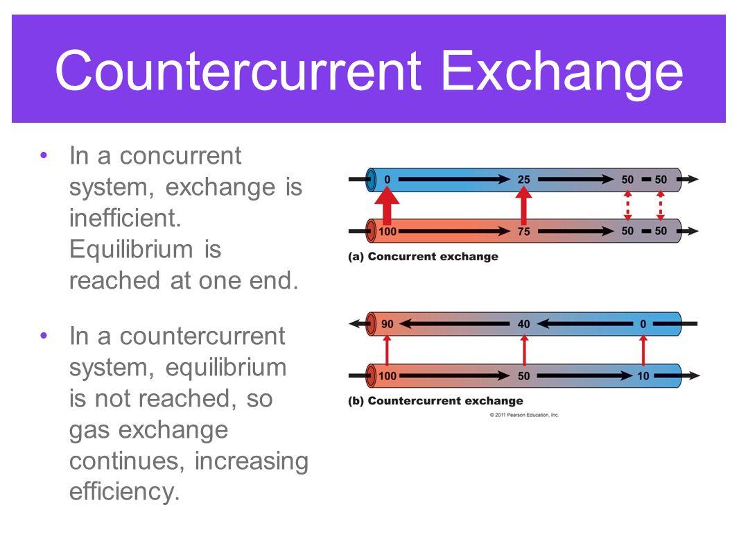 Countercurrent Exchange