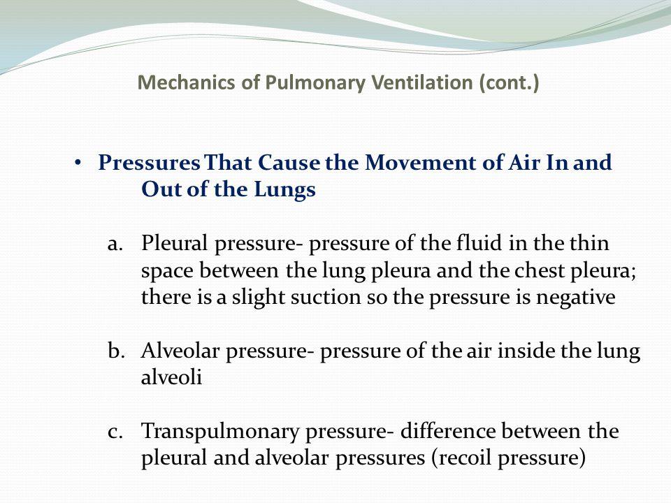 Mechanics of Pulmonary Ventilation (cont.)