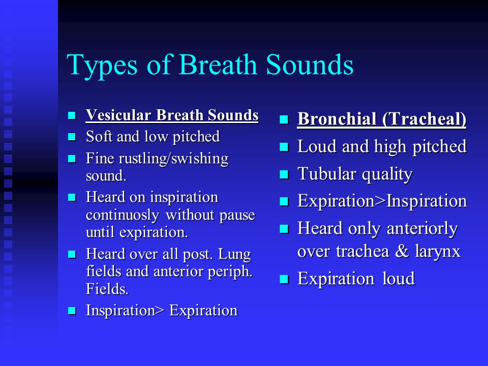 Types of Breath Sounds Bronchial (Tracheal) Loud and high pitched