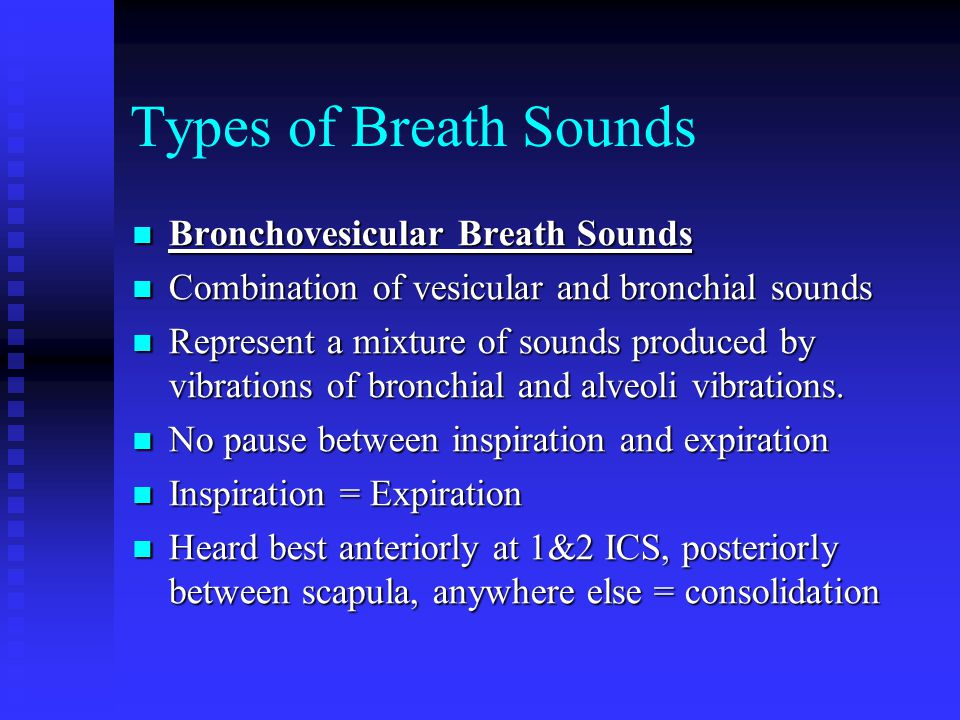 Types of Breath Sounds Bronchovesicular Breath Sounds