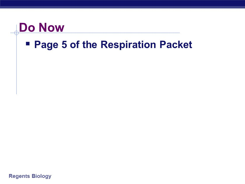Do Now Page 5 of the Respiration Packet
