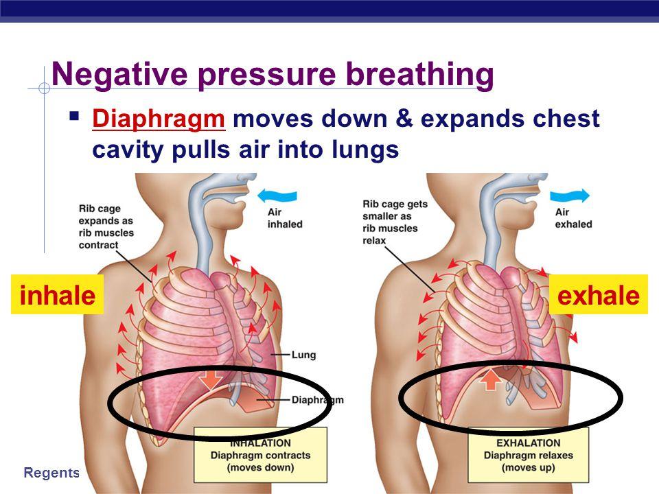 Negative pressure breathing