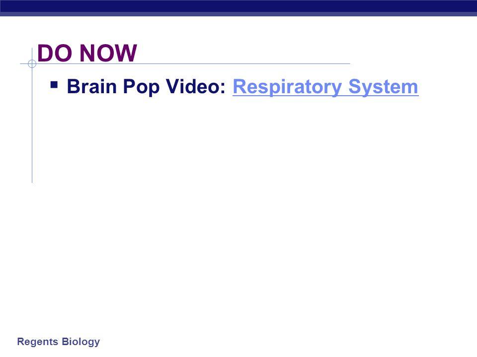 DO NOW Brain Pop Video: Respiratory System