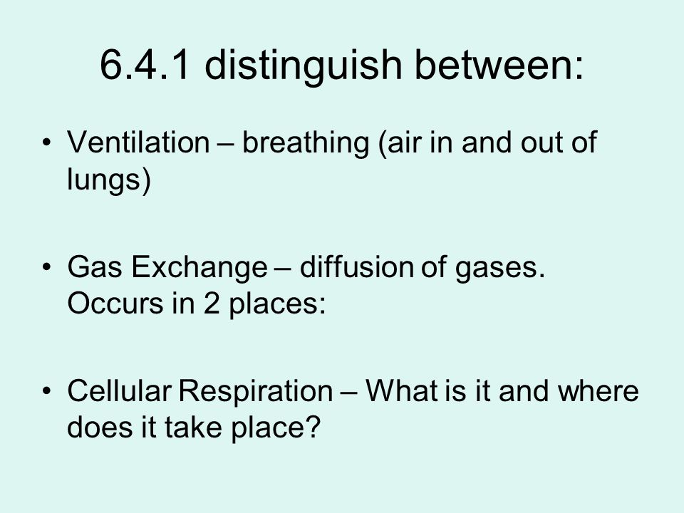 6.4.1 distinguish between: Ventilation – breathing (air in and out of lungs) Gas Exchange – diffusion of gases. Occurs in 2 places: