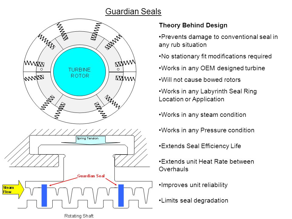 Guardian Seals Theory Behind Design