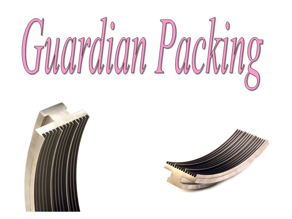 Guardian Packing
