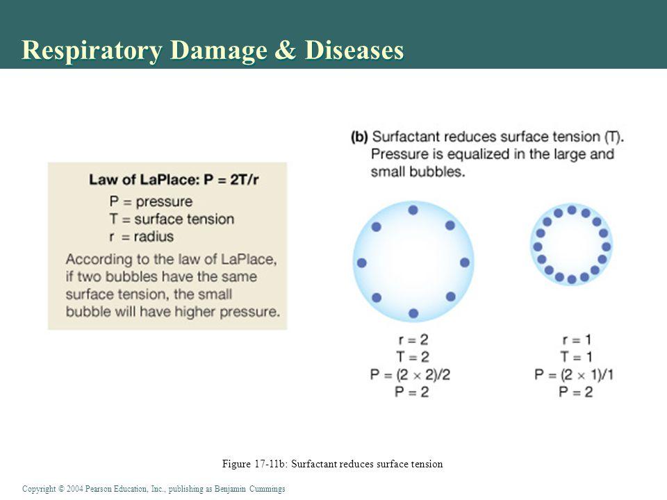 Respiratory Damage & Diseases