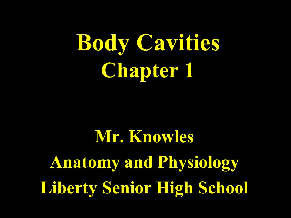 Mr. Knowles Anatomy and Physiology Liberty Senior High School