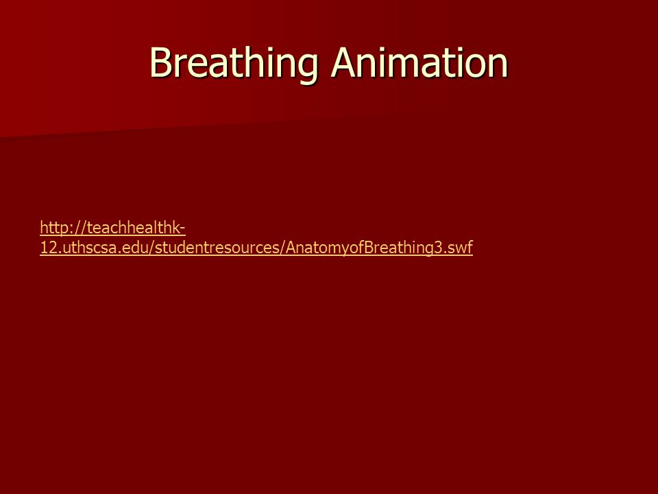 Breathing Animation http://teachhealthk-12.uthscsa.edu/studentresources/AnatomyofBreathing3.swf