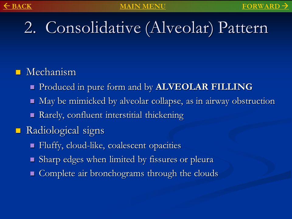 2. Consolidative (Alveolar) Pattern