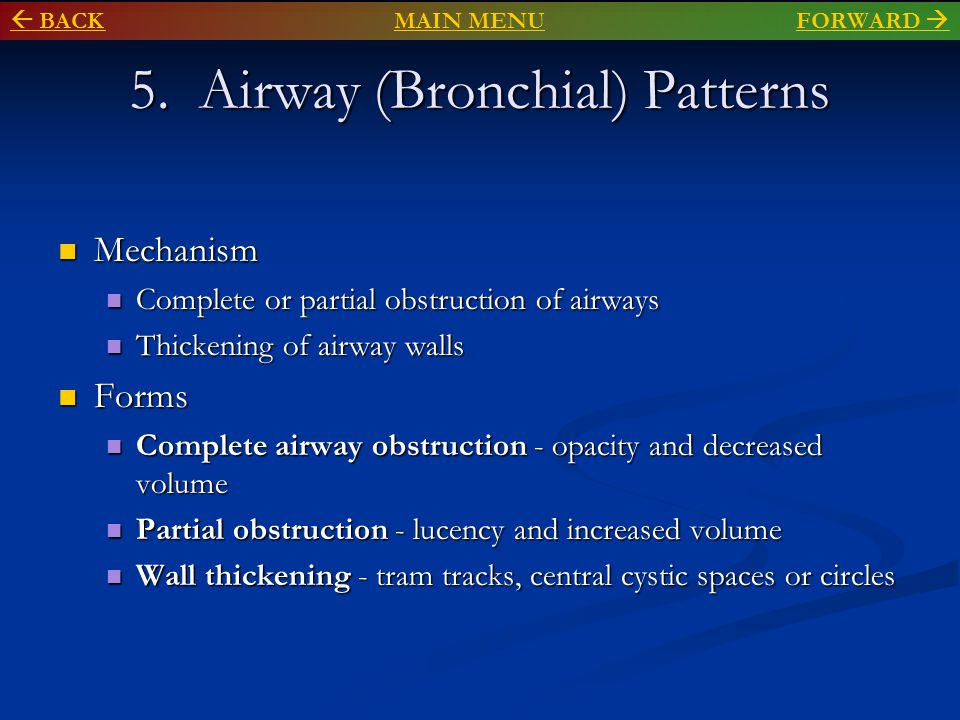 5. Airway (Bronchial) Patterns