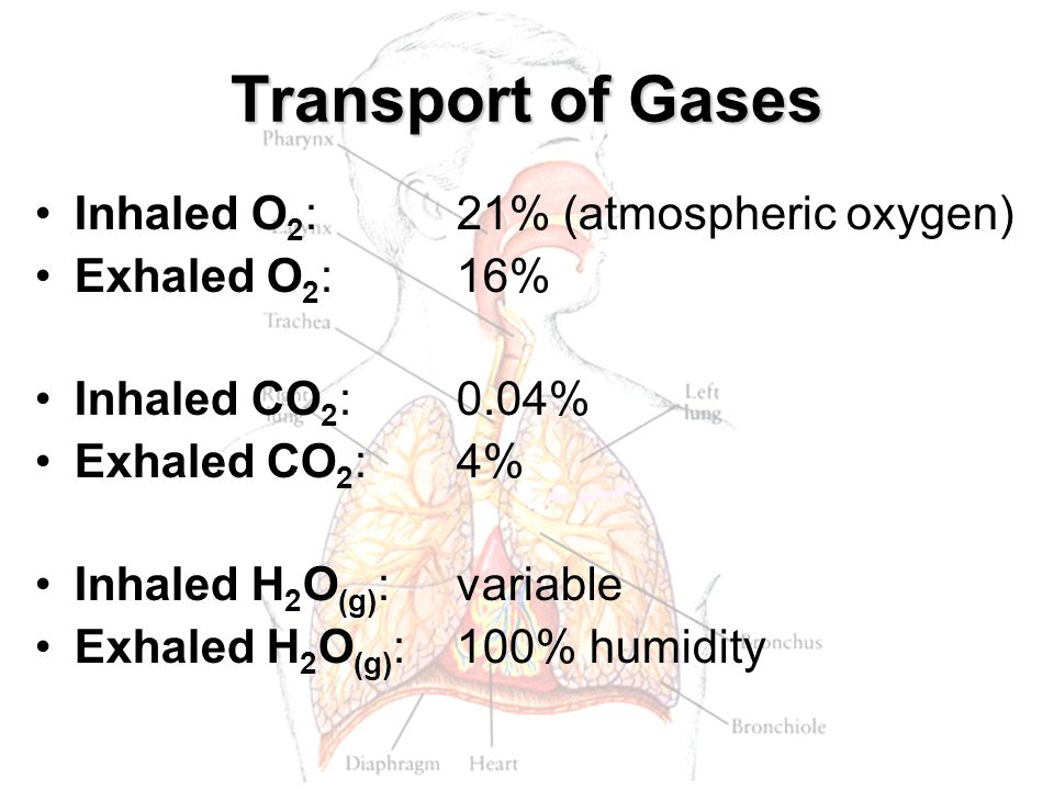 Transport of Gases Inhaled O2: 21% (atmospheric oxygen)