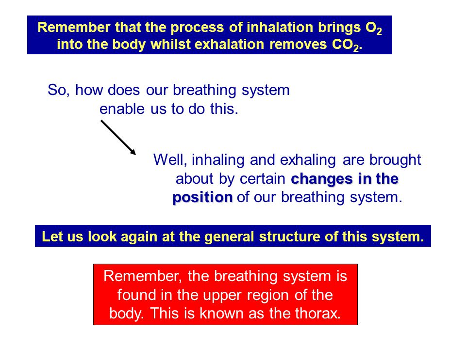 Let us look again at the general structure of this system.