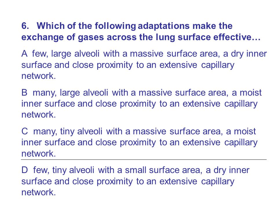 6. Which of the following adaptations make the exchange of gases across the lung surface effective…