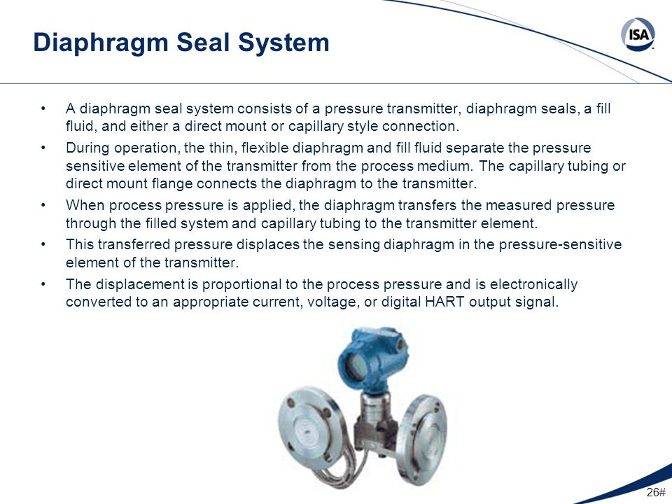 Diaphragm Seal System