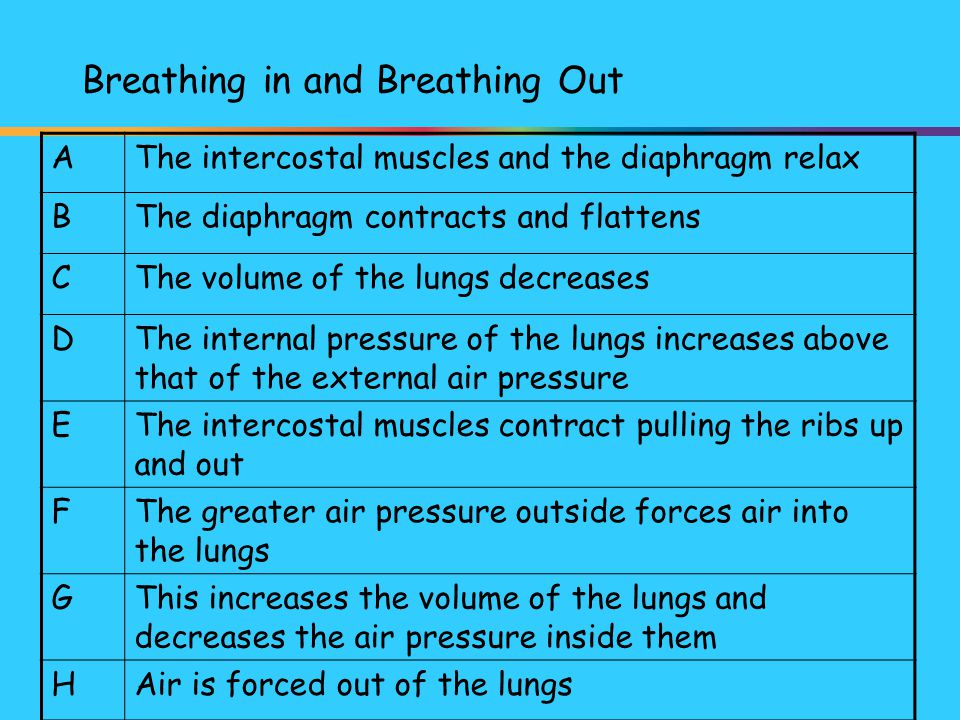Breathing in and Breathing Out